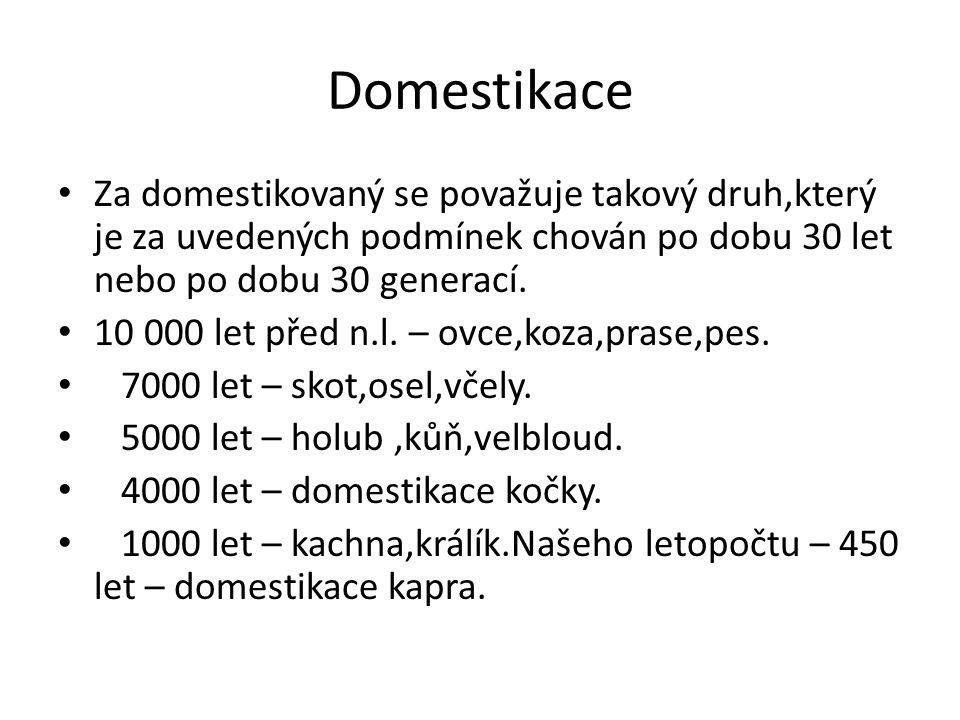 Domestikace Za domestikovaný se považuje takový druh,který je za uvedených podmínek chován po dobu 30 let nebo po dobu 30 generací. 10 000 let před n.