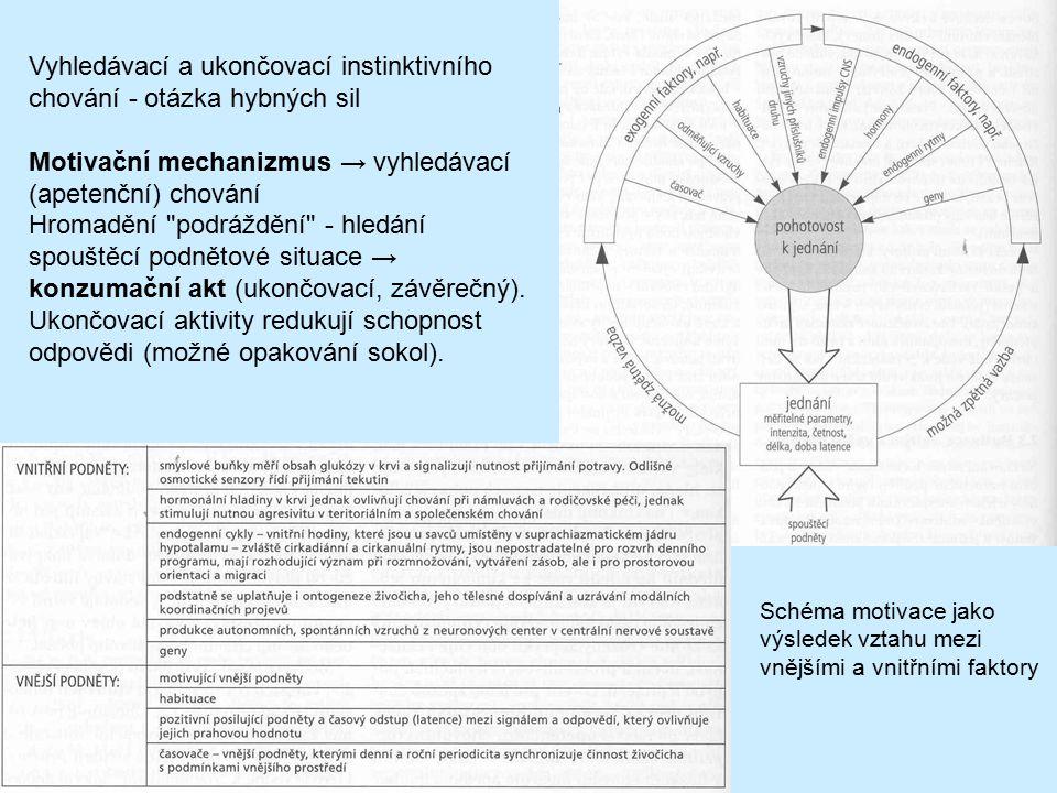 Schéma motivace jako výsledek vztahu mezi vnějšími a vnitřními faktory Vyhledávací a ukončovací instinktivního chování - otázka hybných sil Motivační
