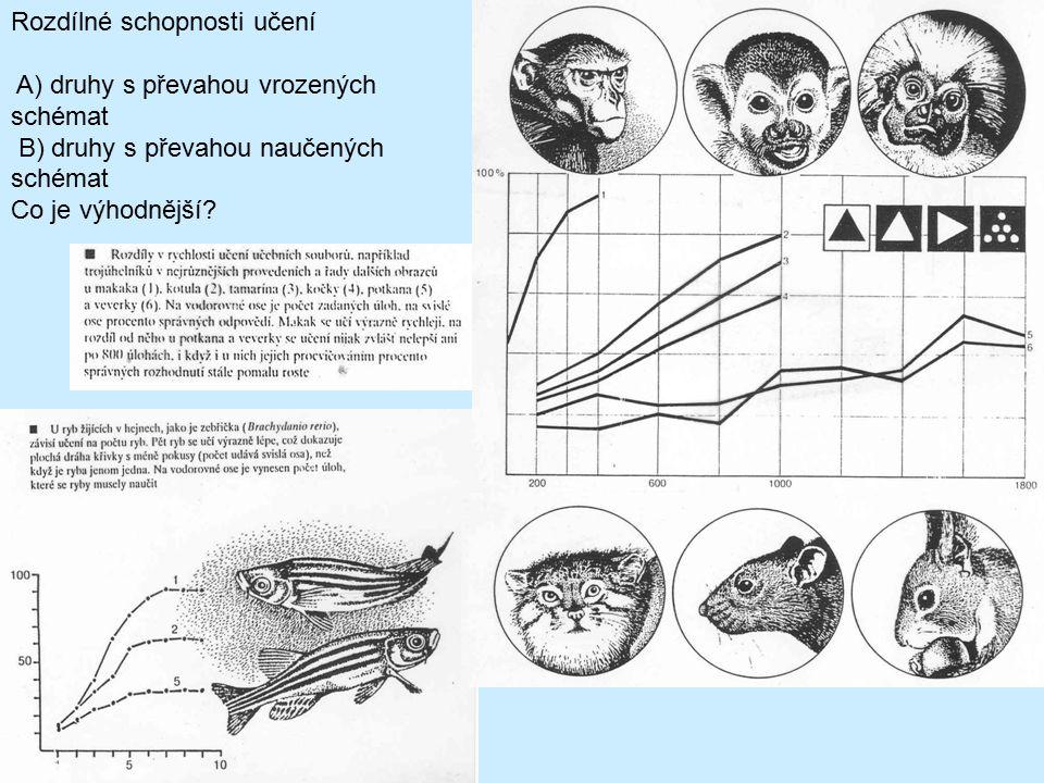 Rozdílné schopnosti učení A) druhy s převahou vrozených schémat B) druhy s převahou naučených schémat Co je výhodnější?
