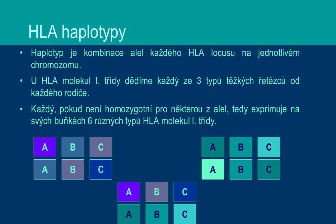 HLA haplotypy Haplotyp je kombinace alel každého HLA locusu na jednotlivém chromozomu.