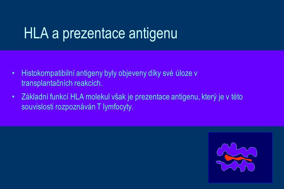 HLA a prezentace antigenu Histokompatibilní antigeny byly objeveny díky své úloze v transplantačních reakcích. Základní funkcí HLA molekul však je pre