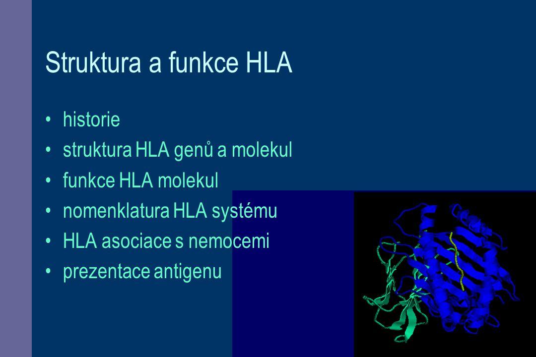 Struktura a funkce HLA historie struktura HLA genů a molekul funkce HLA molekul nomenklatura HLA systému HLA asociace s nemocemi prezentace antigenu