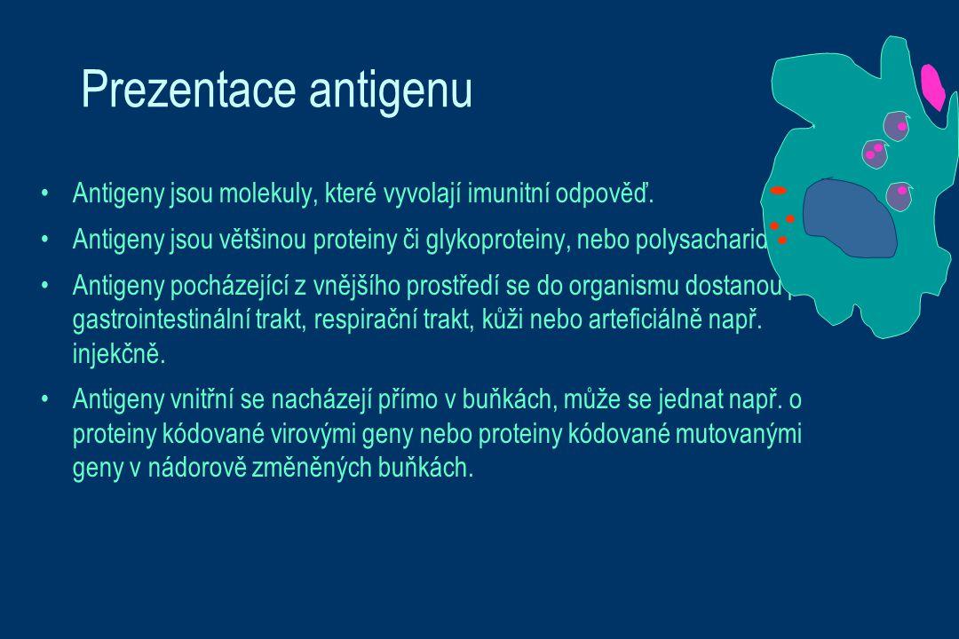Prezentace antigenu Antigeny jsou molekuly, které vyvolají imunitní odpověď. Antigeny jsou většinou proteiny či glykoproteiny, nebo polysacharidy. Ant