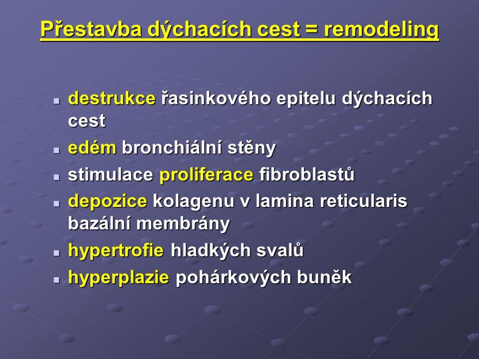 Přestavba dýchacích cest = remodeling destrukce řasinkového epitelu dýchacích cest destrukce řasinkového epitelu dýchacích cest edém bronchiální stěny edém bronchiální stěny stimulace proliferace fibroblastů stimulace proliferace fibroblastů depozice kolagenu v lamina reticularis bazální membrány depozice kolagenu v lamina reticularis bazální membrány hypertrofie hladkých svalů hypertrofie hladkých svalů hyperplazie pohárkových buněk hyperplazie pohárkových buněk