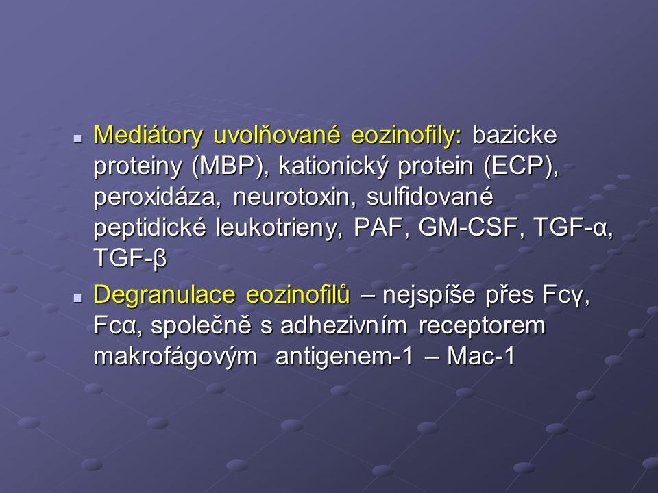 Mediátory uvolňované eozinofily: bazicke proteiny (MBP), kationický protein (ECP), peroxidáza, neurotoxin, sulfidované peptidické leukotrieny, PAF, GM-CSF, TGF-α, TGF-β Mediátory uvolňované eozinofily: bazicke proteiny (MBP), kationický protein (ECP), peroxidáza, neurotoxin, sulfidované peptidické leukotrieny, PAF, GM-CSF, TGF-α, TGF-β Degranulace eozinofilů – nejspíše přes Fcγ, Fcα, společně s adhezivním receptorem makrofágovým antigenem-1 – Mac-1 Degranulace eozinofilů – nejspíše přes Fcγ, Fcα, společně s adhezivním receptorem makrofágovým antigenem-1 – Mac-1