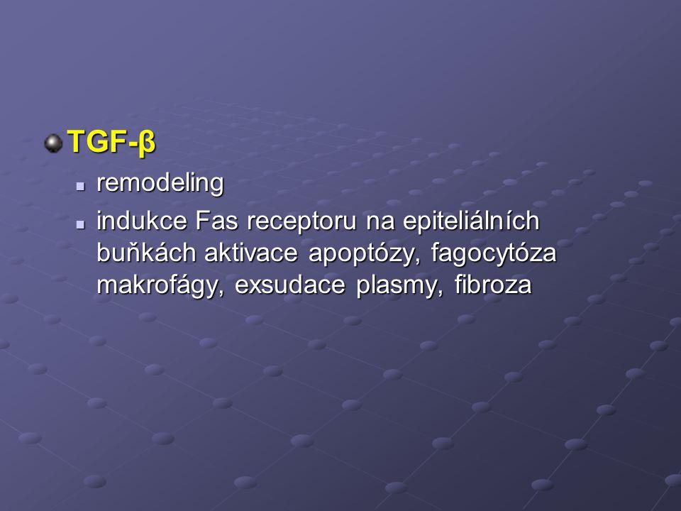 TGF-β remodeling remodeling indukce Fas receptoru na epiteliálních buňkách aktivace apoptózy, fagocytóza makrofágy, exsudace plasmy, fibroza indukce Fas receptoru na epiteliálních buňkách aktivace apoptózy, fagocytóza makrofágy, exsudace plasmy, fibroza