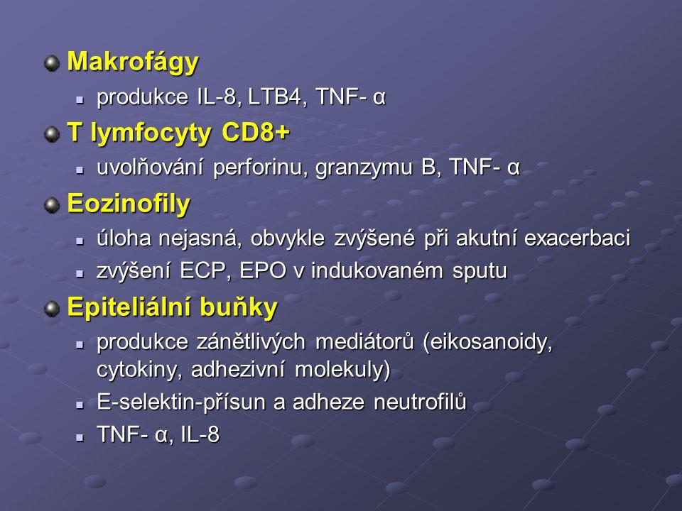 Makrofágy produkce IL-8, LTB4, TNF- α produkce IL-8, LTB4, TNF- α T lymfocyty CD8+ uvolňování perforinu, granzymu B, TNF- α uvolňování perforinu, granzymu B, TNF- αEozinofily úloha nejasná, obvykle zvýšené při akutní exacerbaci úloha nejasná, obvykle zvýšené při akutní exacerbaci zvýšení ECP, EPO v indukovaném sputu zvýšení ECP, EPO v indukovaném sputu Epiteliální buňky produkce zánětlivých mediátorů (eikosanoidy, cytokiny, adhezivní molekuly) produkce zánětlivých mediátorů (eikosanoidy, cytokiny, adhezivní molekuly) E-selektin-přísun a adheze neutrofilů E-selektin-přísun a adheze neutrofilů TNF- α, IL-8 TNF- α, IL-8