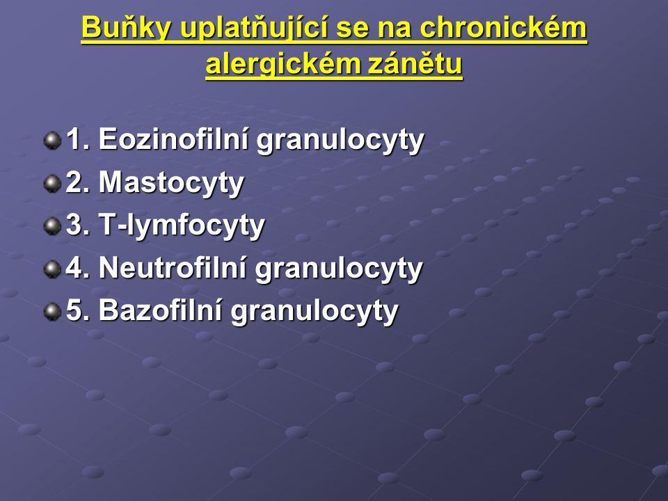 Buňky Makrofágy Neutrofily CD8+ lymfocyty Eozinofily Epitel.