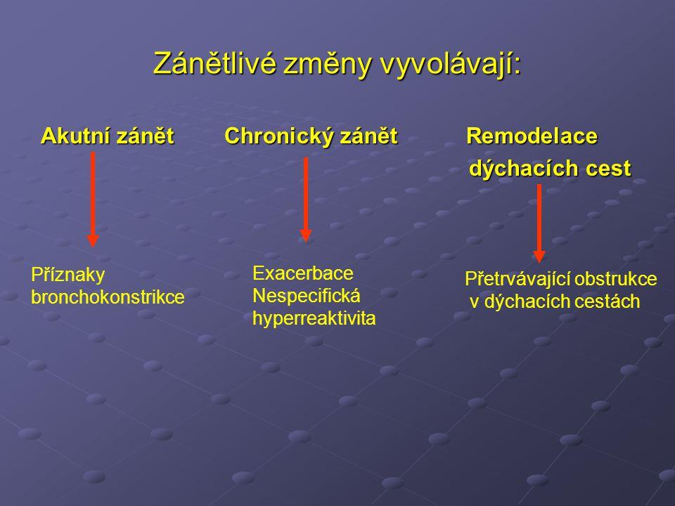 Zánětlivé změny vyvolávají: Akutní zánět Chronický zánět Remodelace dýchacích cest dýchacích cest Příznaky bronchokonstrikce Exacerbace Nespecifická hyperreaktivita Přetrvávající obstrukce v dýchacích cestách