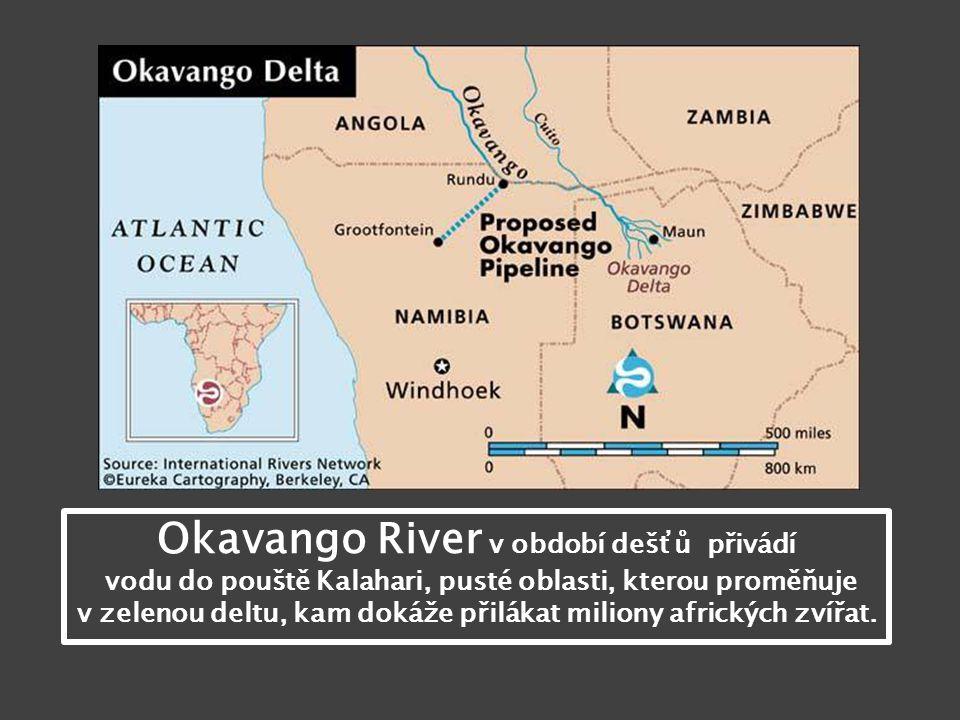 Okavango River v období dešťů přivádí vodu do pouště Kalahari, pusté oblasti, kterou proměňuje v zelenou deltu, kam dokáže přilákat miliony afrických zvířat.
