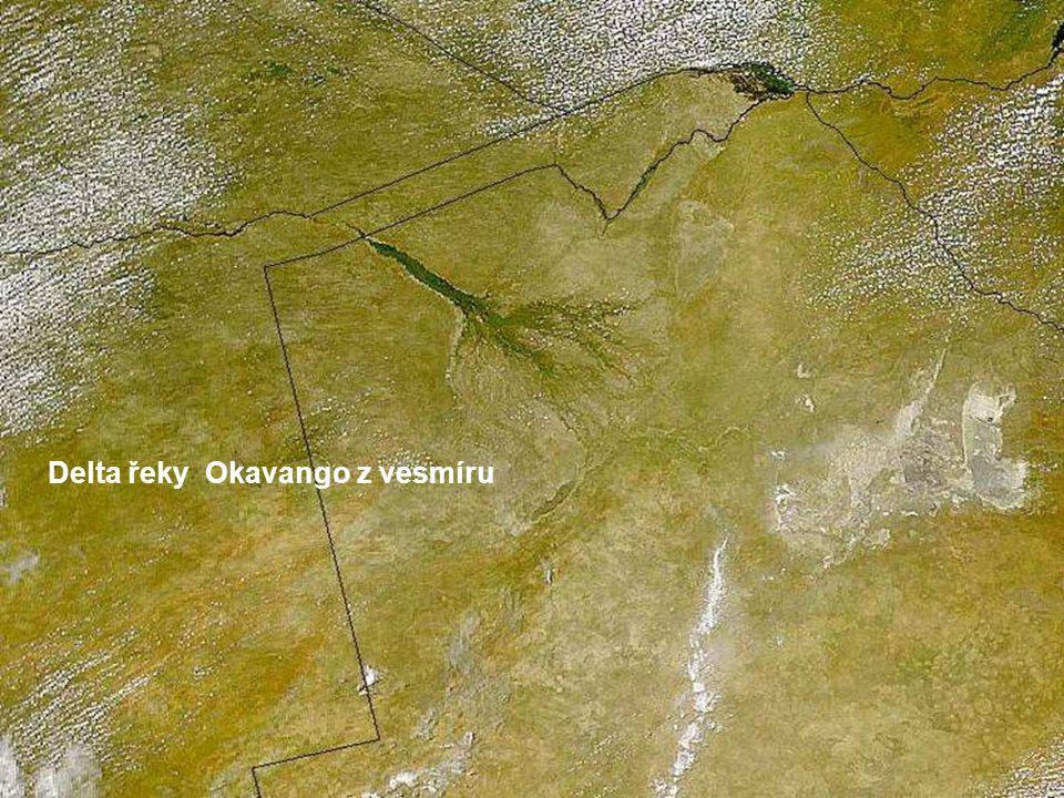 Delta Okavango, přesněji aluviální usazeniny sedimentací, které přijímají vodu z řeky, aby se rozlily do terénu, odkud se nakonec vypaří. Pak se celý