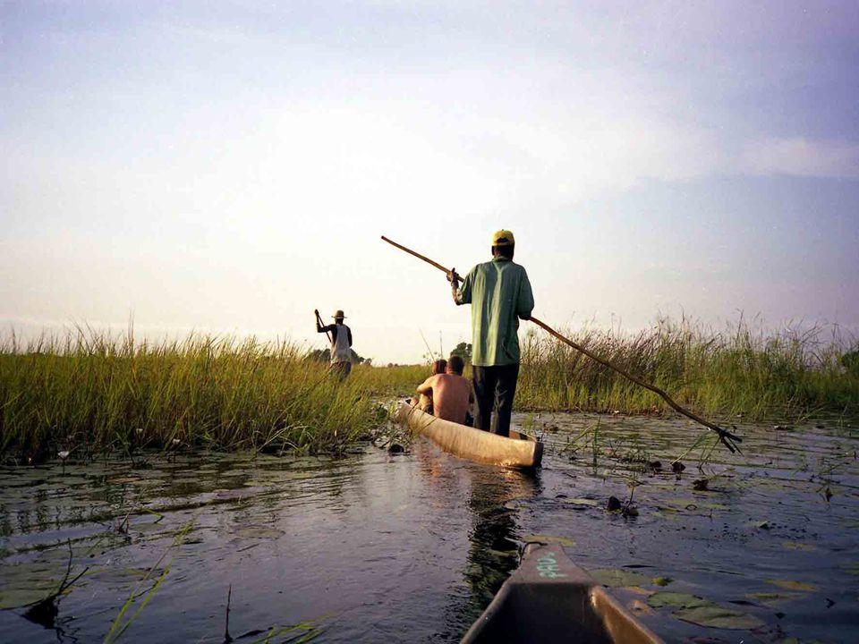 Zatopená plocha pokrývá asi 22 000 km ² severní Botswany. Velká povodeň v oblasti Okavango má svůj vrchol v období od května do června. Je to nejlepší