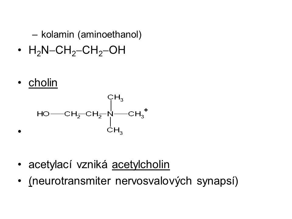 –kolamin (aminoethanol) H 2 N  CH 2  CH 2  OH cholin acetylací vzniká acetylcholin (neurotransmiter nervosvalových synapsí) +