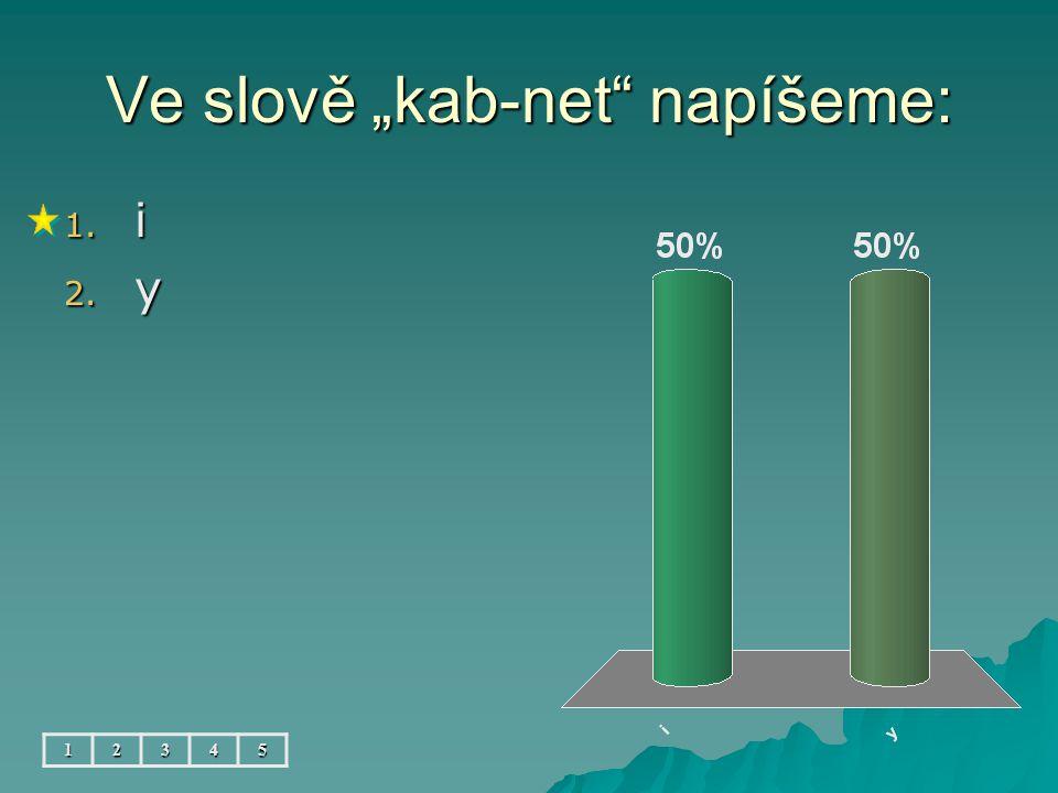 """Ve slově """"kab-net napíšeme: 12345 1. i 2. y"""