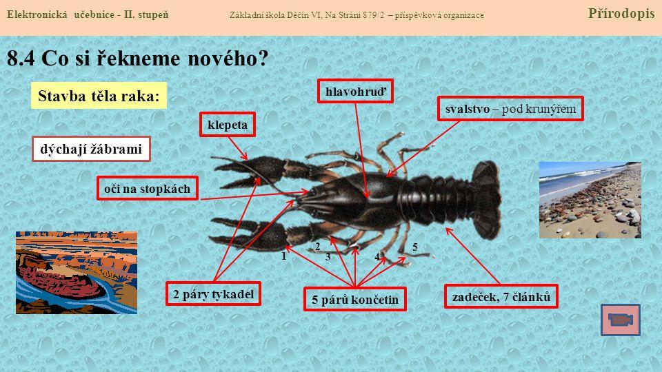 8.4 Co si řekneme nového.Elektronická učebnice - II.