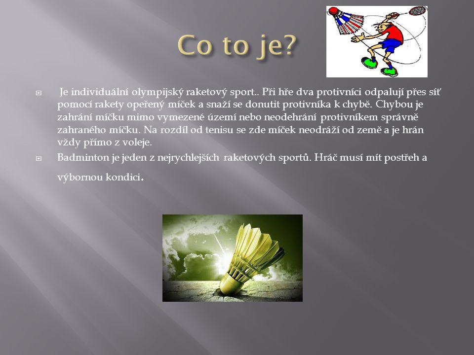 Je individuální olympijský raketový sport..