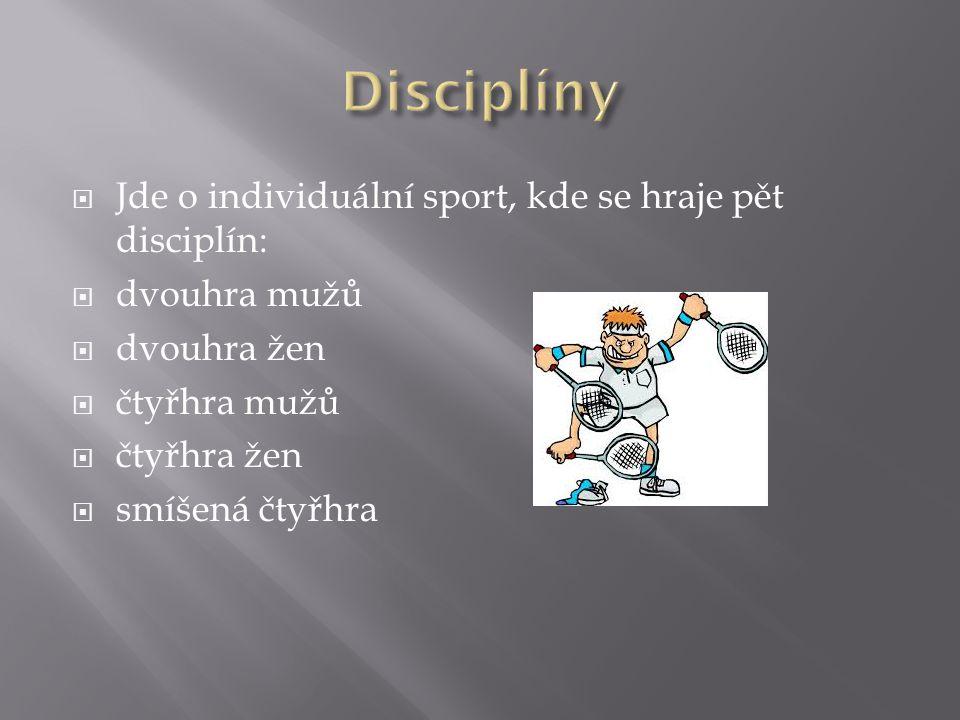  Jde o individuální sport, kde se hraje pět disciplín:  dvouhra mužů  dvouhra žen  čtyřhra mužů  čtyřhra žen  smíšená čtyřhra