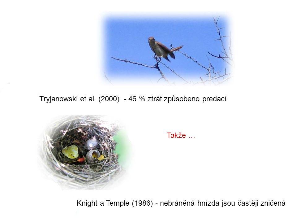 Takže … Knight a Temple (1986) - nebráněná hnízda jsou častěji zničená Tryjanowski et al. (2000) - 46 % ztrát způsobeno predací