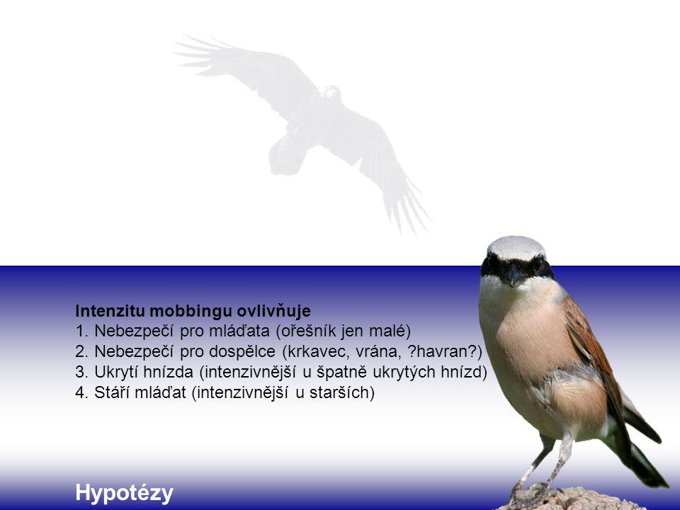 Hypotézy Intenzitu mobbingu ovlivňuje 1. Nebezpečí pro mláďata (ořešník jen malé) 2. Nebezpečí pro dospělce (krkavec, vrána, ?havran?) 3. Ukrytí hnízd