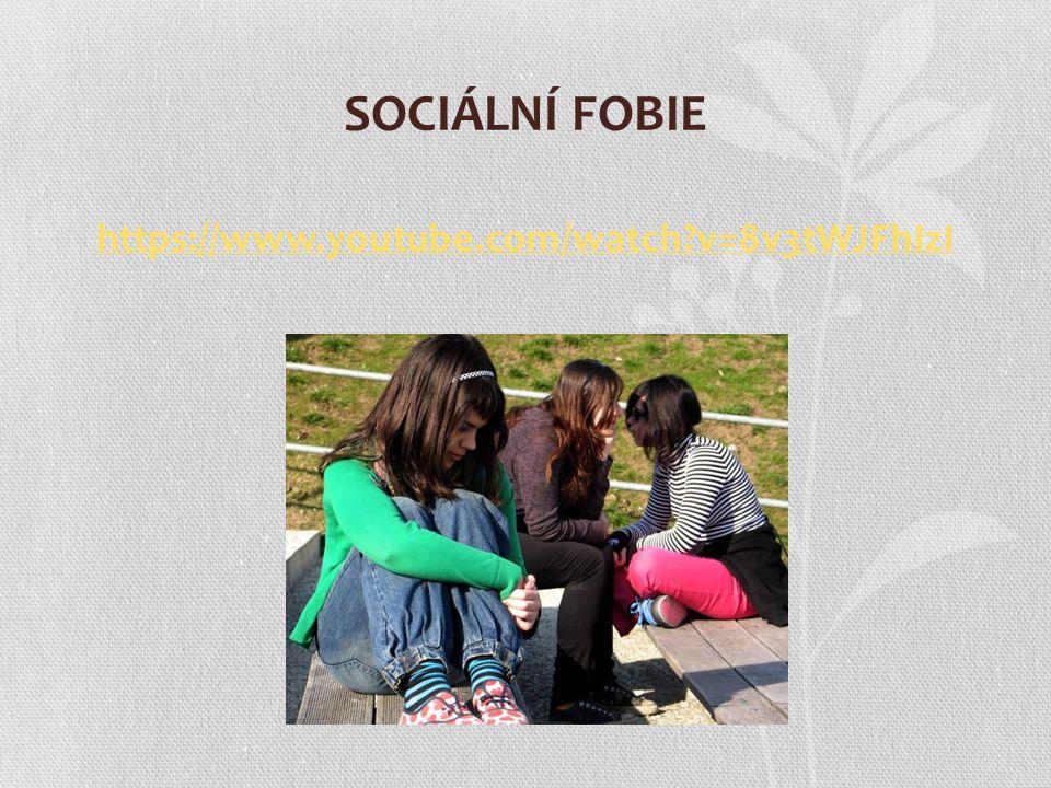 Co je to sociální opora.