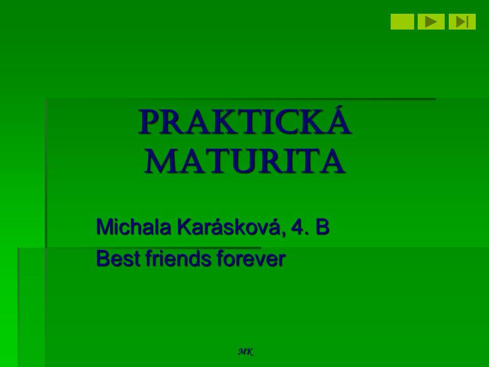 MK Praktická maturita Michala Karásková, 4. B Best friends forever