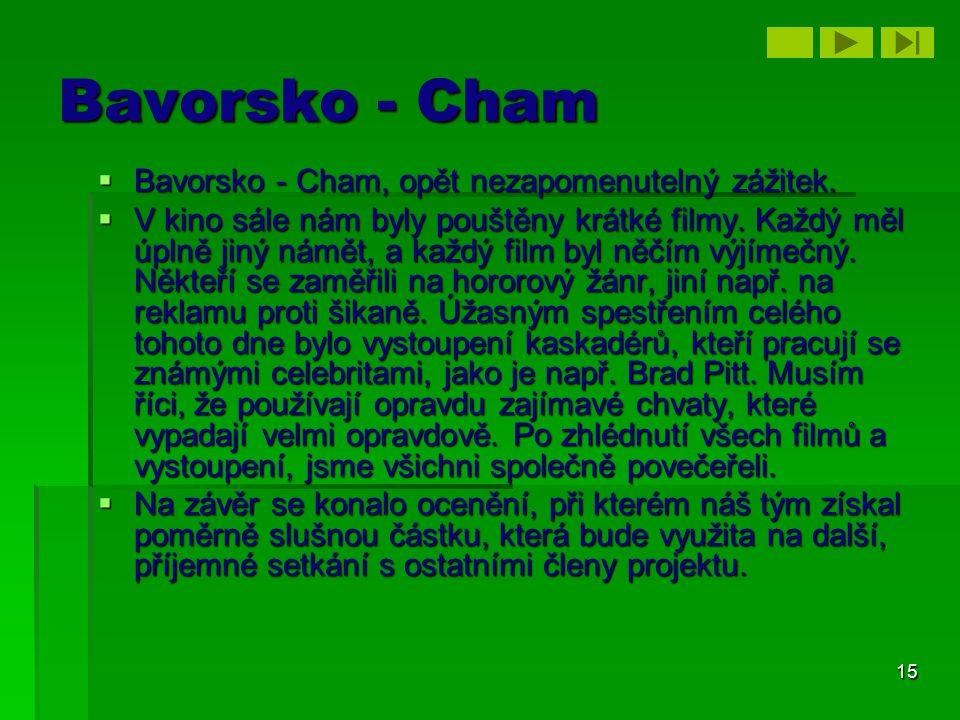 15 Bavorsko - Cham  Bavorsko - Cham, opět nezapomenutelný zážitek.  V kino sále nám byly pouštěny krátké filmy. Každý měl úplně jiný námět, a každý