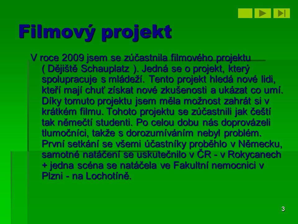 3 Filmový projekt V roce 2009 jsem se zúčastnila filmového projektu ( Dějiště Schauplatz ). Jedná se o projekt, který spolupracuje s mládeží. Tento pr