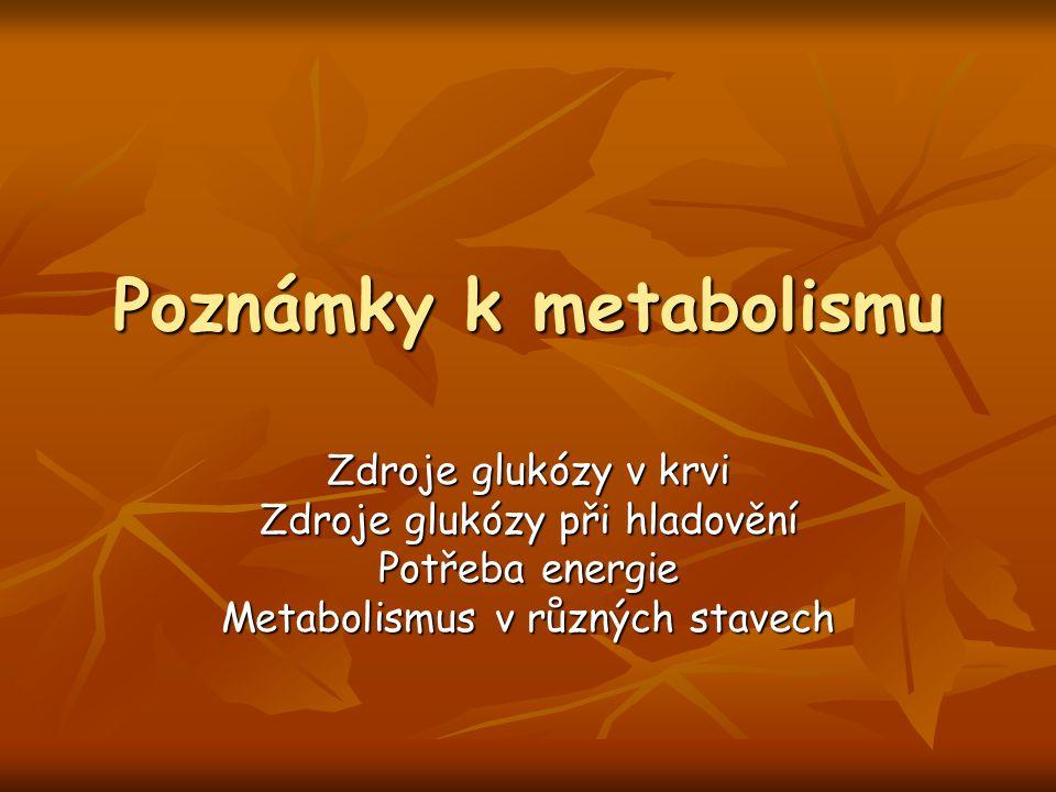 Poznámky k metabolismu Zdroje glukózy v krvi Zdroje glukózy při hladovění Potřeba energie Metabolismus v různých stavech