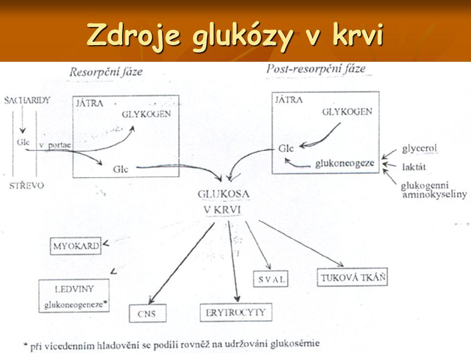 Zdroje glukózy v krvi