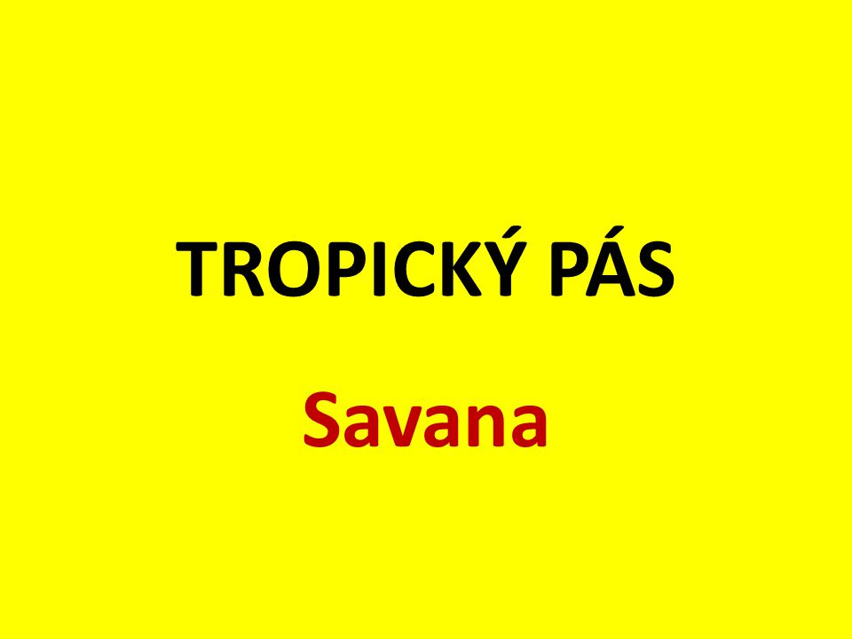 TROPICKÝ PÁS Savana