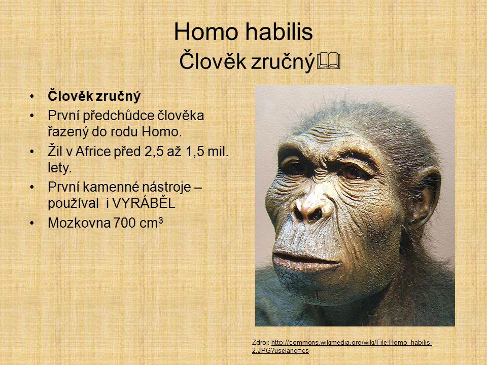 Lucy  Stáří Lucy se odhaduje na 3,2 milionů let. Australopithekové se uměli pohybovat rychlostí až 4,6 km/h. Zdroj: http://commons.wikimedia.org/wiki