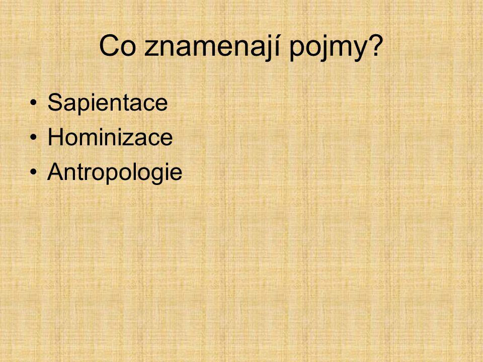 Co znamenají pojmy? Sapientace Hominizace Antropologie