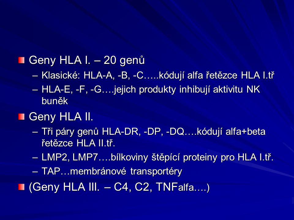 Geny HLA I.