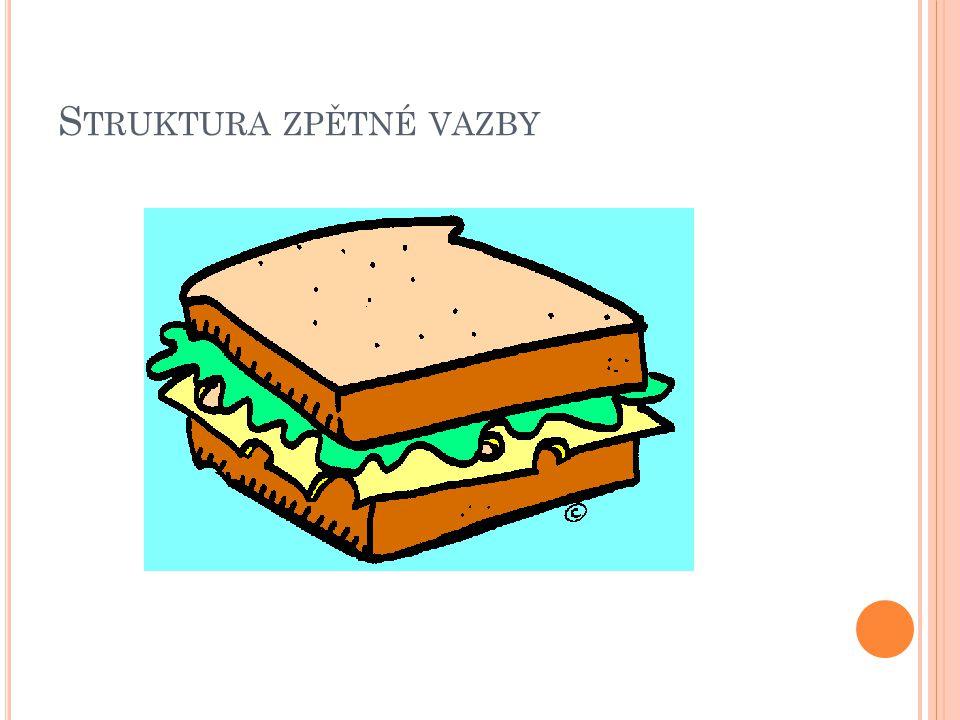 S TRUKTURA ZPĚTNÉ VAZBY