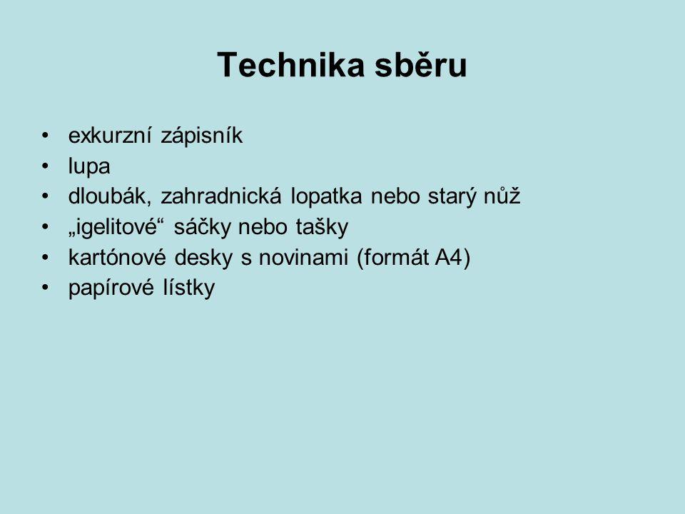 Sběr sukulentů týká se rozchodníků (Sedum sp.) a netřesků (Sempervivum sp.).