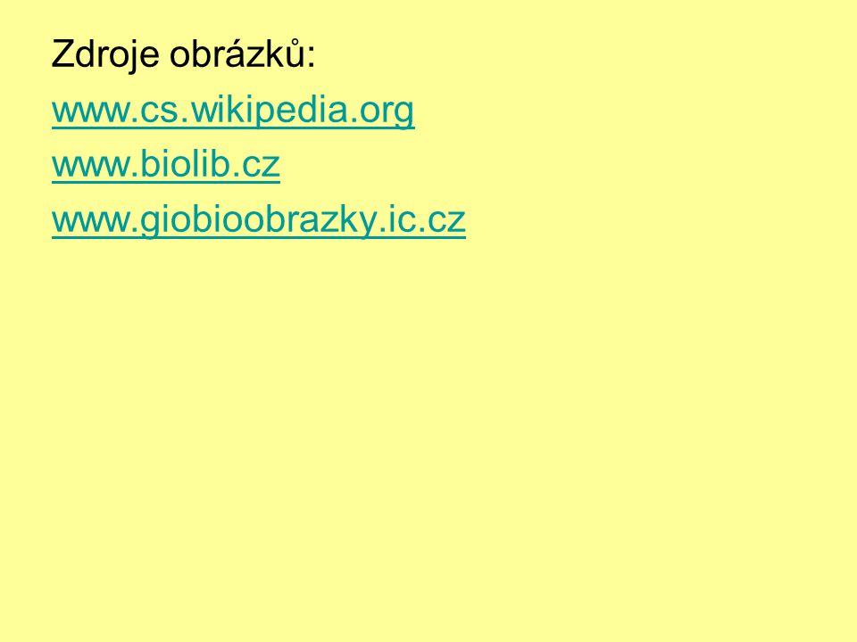 Zdroje obrázků: www.cs.wikipedia.org www.biolib.cz www.giobioobrazky.ic.cz