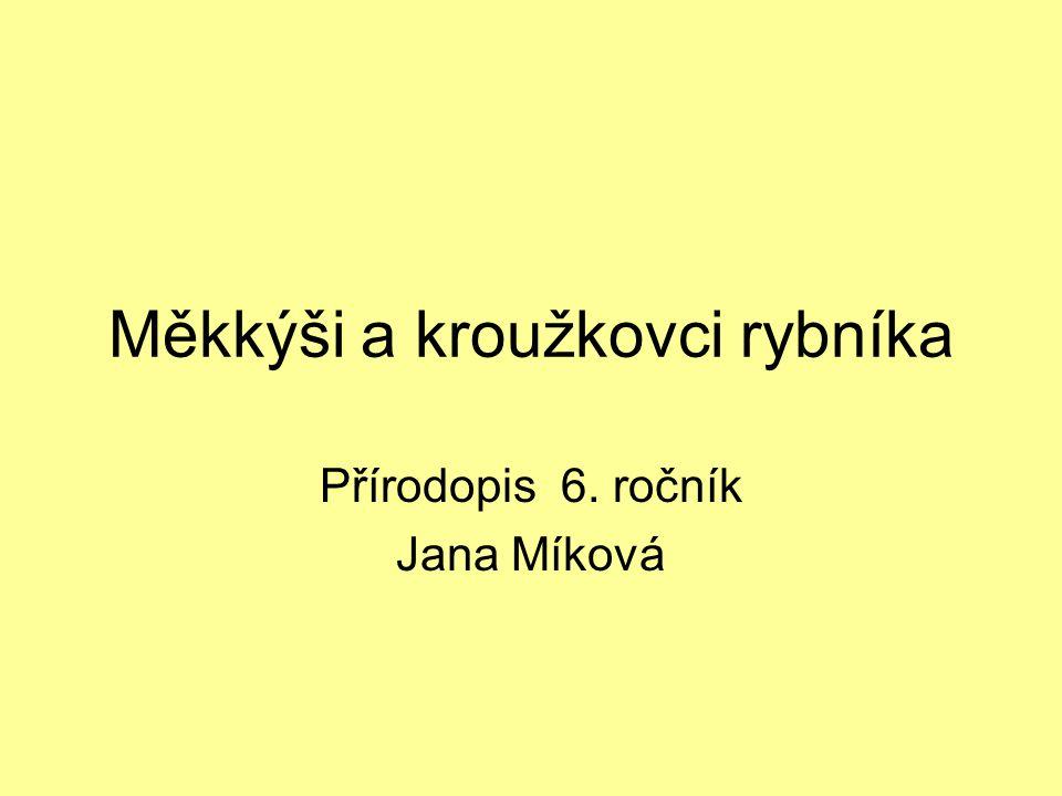 Měkkýši a kroužkovci rybníka Přírodopis 6. ročník Jana Míková