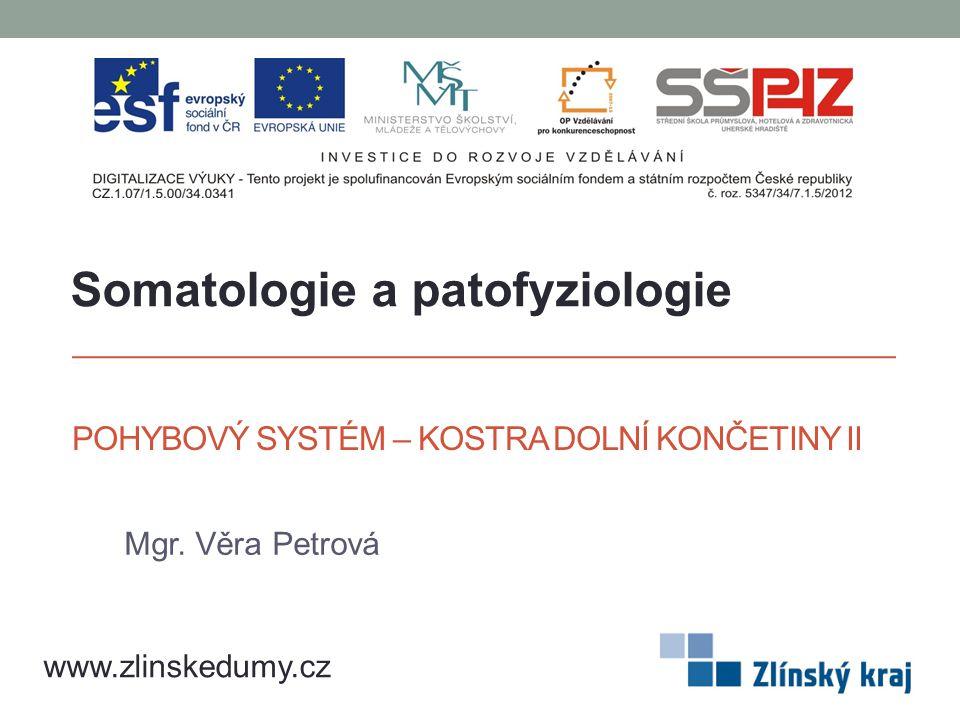 POHYBOVÝ SYSTÉM – KOSTRA DOLNÍ KONČETINY II Mgr. Věra Petrová www.zlinskedumy.cz Somatologie a patofyziologie