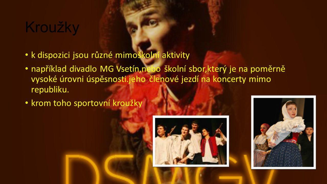 Kroužky k dispozici jsou různé mimoškolní aktivity například divadlo MG Vsetín,nebo školní sbor,který je na poměrně vysoké úrovni úspěsnosti.jeho člen