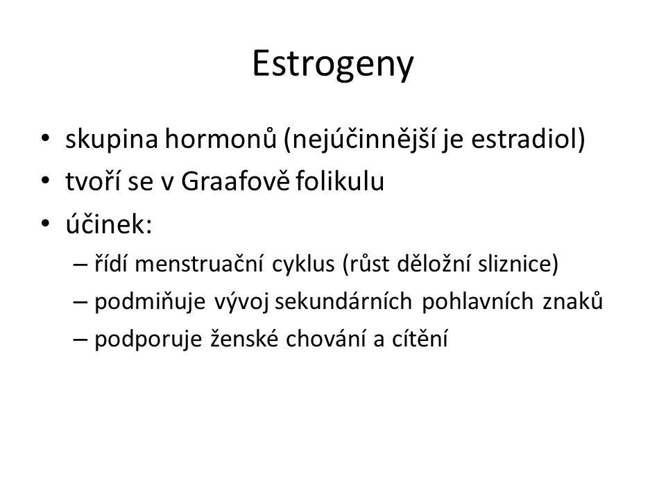 Estrogeny skupina hormonů (nejúčinnější je estradiol) tvoří se v Graafově folikulu účinek: – řídí menstruační cyklus (růst děložní sliznice) – podmiňuje vývoj sekundárních pohlavních znaků – podporuje ženské chování a cítění