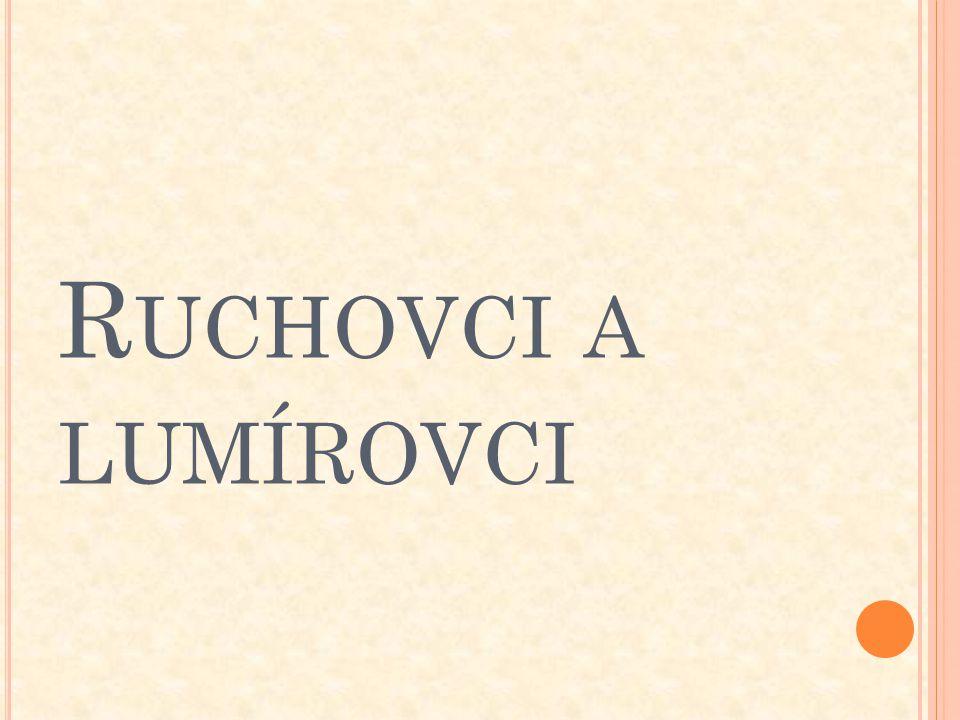 R UCHOVCI Čeští básníci sdružení kolem almanachu Ruch, který poprvé vyšel roku 1868 při příležitosti položení základního kamene Národního divadla.
