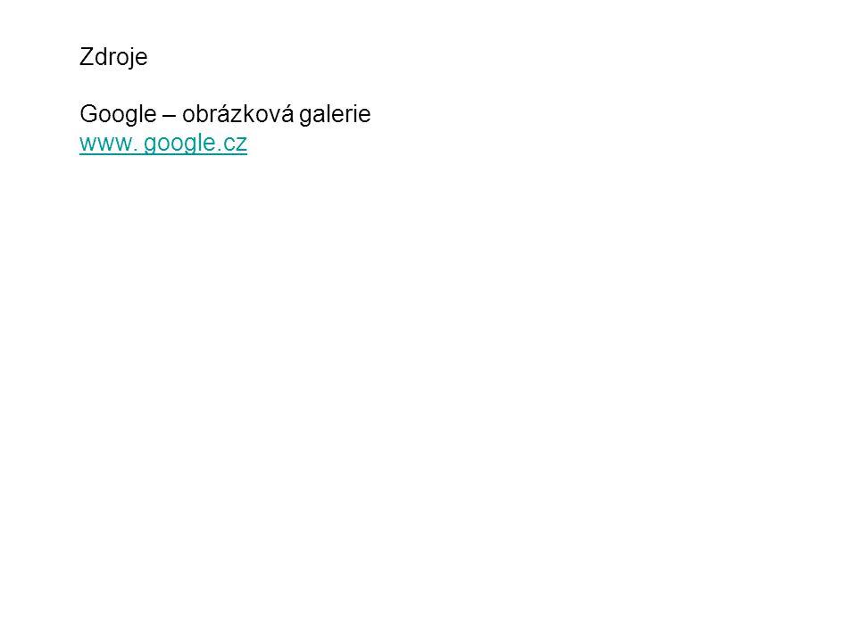 Zdroje Google – obrázková galerie www. google.cz