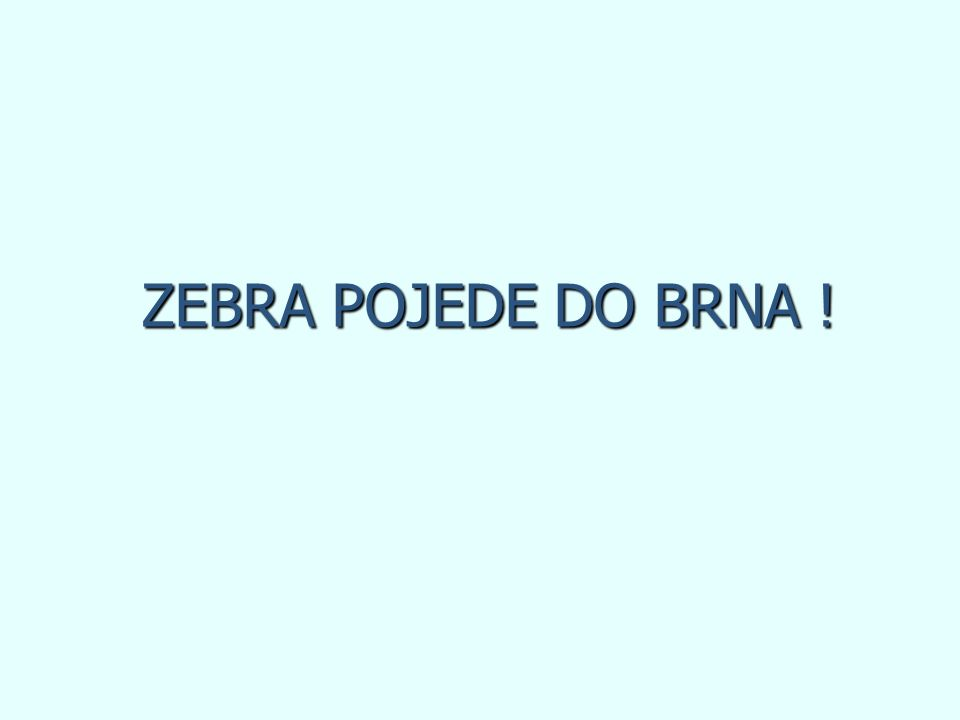 ZEBRA POJEDE DO BRNA !