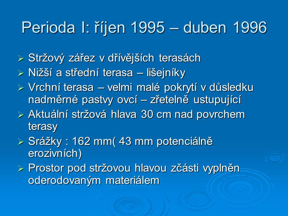 Perioda I: říjen 1995 – duben 1996  Stržový zářez v dřívějších terasách  Nižší a střední terasa – lišejníky  Vrchní terasa – velmi malé pokrytí v d