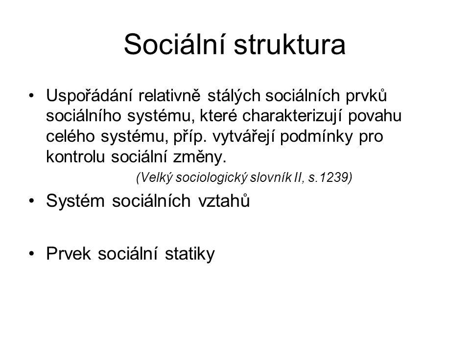 Sociální struktura Uspořádání relativně stálých sociálních prvků sociálního systému, které charakterizují povahu celého systému, příp. vytvářejí podmí