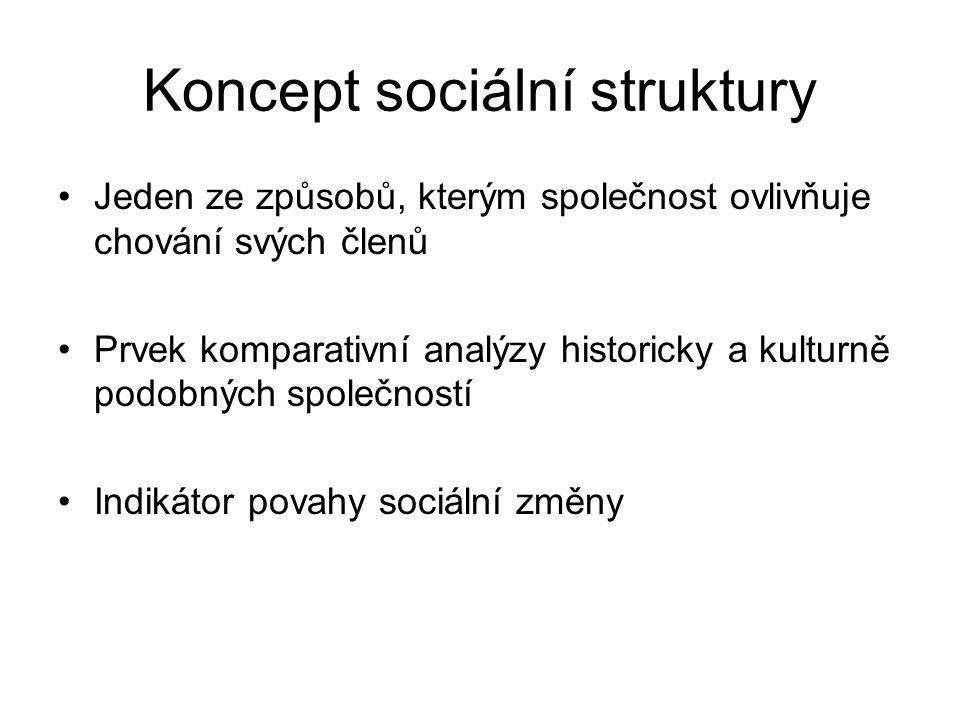 Koncept sociální struktury Jeden ze způsobů, kterým společnost ovlivňuje chování svých členů Prvek komparativní analýzy historicky a kulturně podobnýc