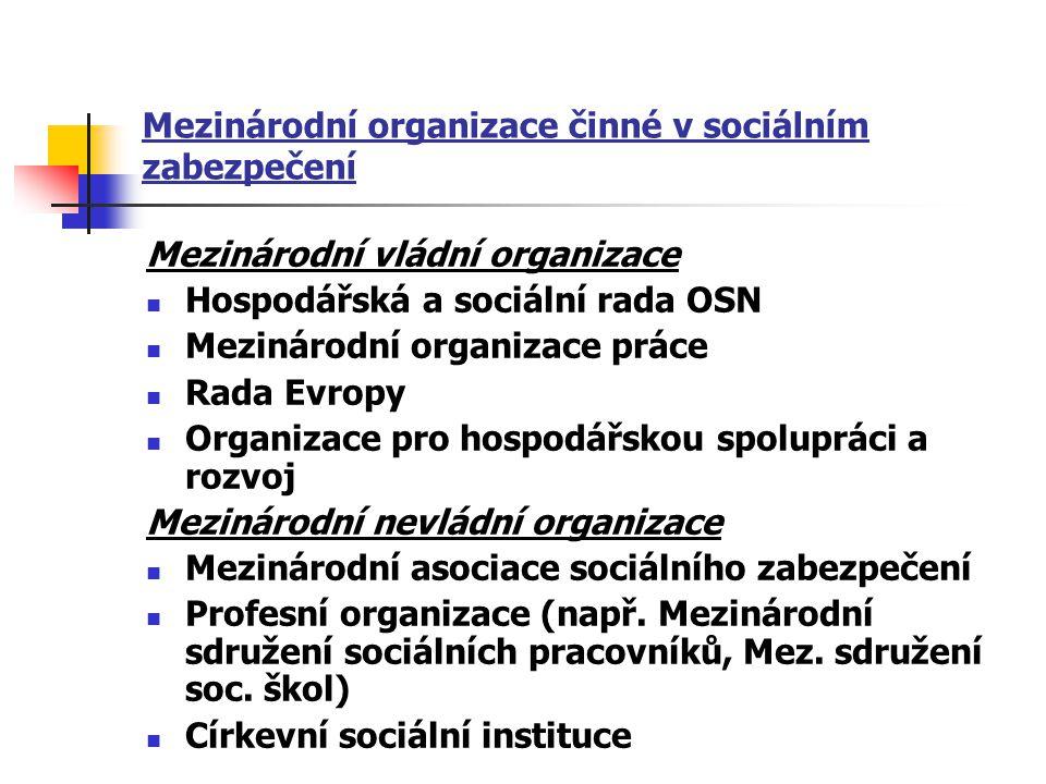 Mezinárodní organizace činné v sociálním zabezpečení Mezinárodní vládní organizace Hospodářská a sociální rada OSN Mezinárodní organizace práce Rada E