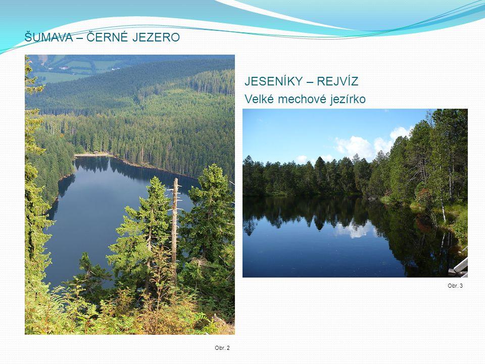 MLADOTICKÉ (ODLEZELSKÉ) - vzniklo sesuvem půdy a je nejmladším jezerem ČR Obr. 4