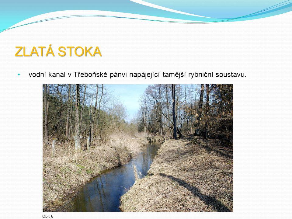 ZLATÁ STOKA vodní kanál v Třeboňské pánvi napájející tamější rybniční soustavu. Obr. 6