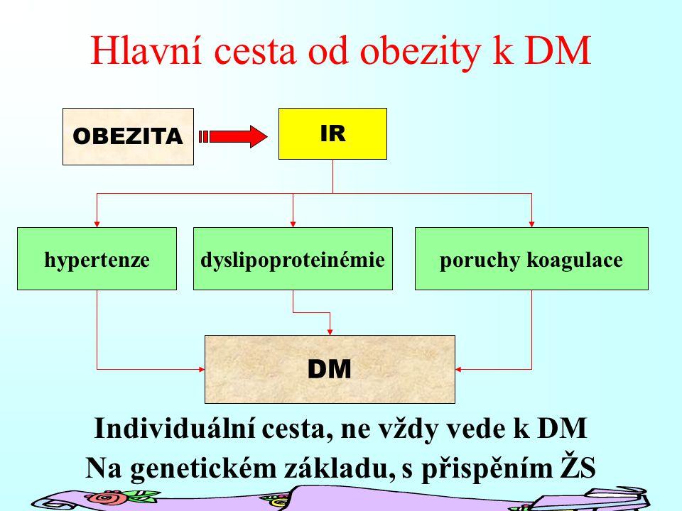 Hlavní cesta od obezity k DM Individuální cesta, ne vždy vede k DM Na genetickém základu, s přispěním ŽS IR hypertenzedyslipoproteinémieporuchy koagulace OBEZITA DM